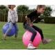 Ludi pripučiamas kamuolys