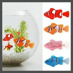 Akvariumas su interaktyvia žuvyte